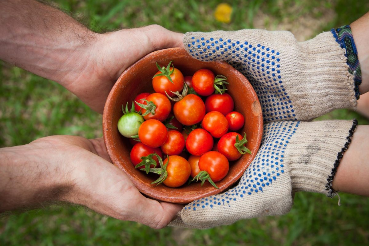 Fortunate Agro Solution Pvt. Ltd.