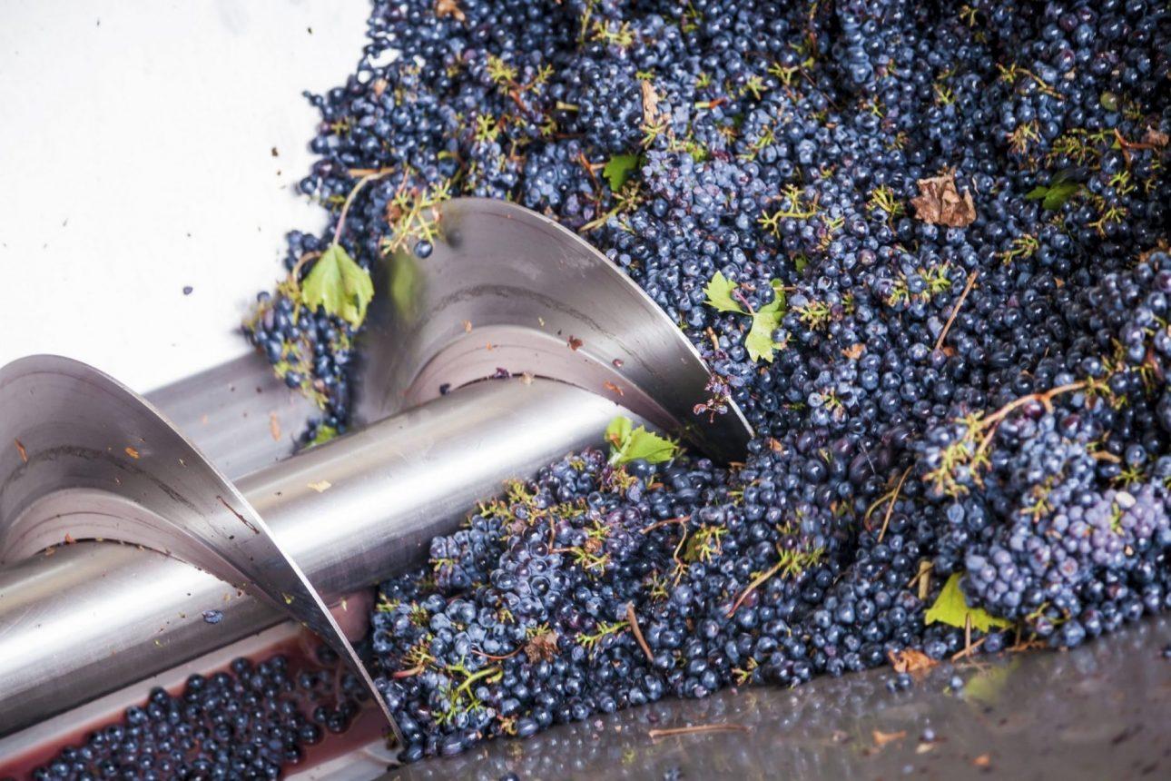 Wickham Hill Winery