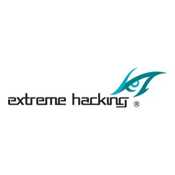 Extreme Hacking