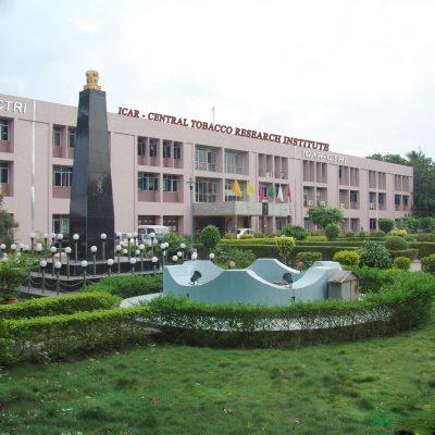 Central Tobacco Research Institute