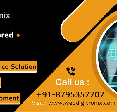 Webdigitronix Softlabs Pvt Ltd